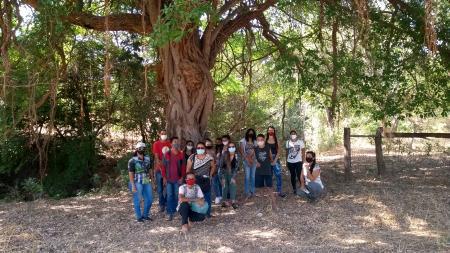 Visita Guiada Bem Patrimonial Tombado Gruta Madame Cassou